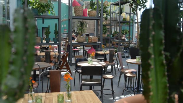 """Ein ganz besonderes Gastro-Konzept hat das """"grün erleben""""-Gartencenter Sauter in Lahr umgesetzt."""