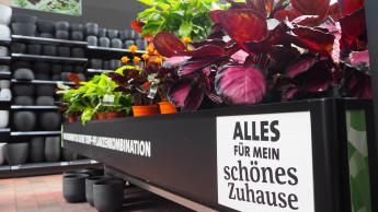 Gartenhandel setzt im ersten Halbjahr 11,6 Prozent mehr um