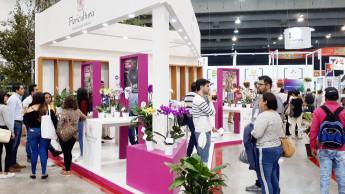 IPM-Ableger in Mexiko erfüllt die Erwartungen der Veranstalter