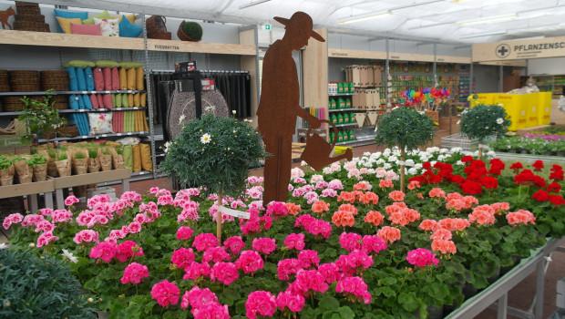 Garten ist einer der drei Bereiche, in die der neue Markt aufgeteilt ist.
