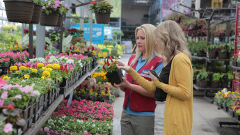 Lowe's wächst im zweiten Quartal deutlich schwächer