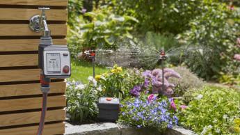 IVG gegen mögliches Verbot der Gartenbewässerung in Dürrephasen