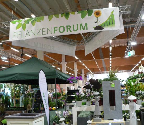 Pflanzenforum