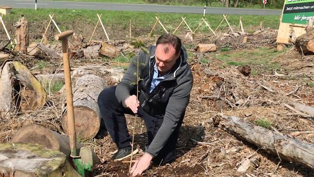 """Die ersten Setzlinge der """"Operation Borkenkäfer"""" von Bio Green sind gepflanzt."""