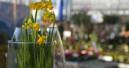 In zwei Bundesländern öffnen die Gartencenter früher